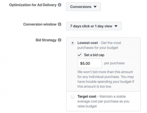 FB Bidding options