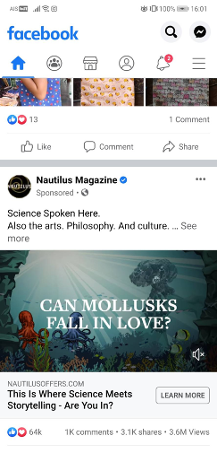 Example of a Paid Ad on Facebook